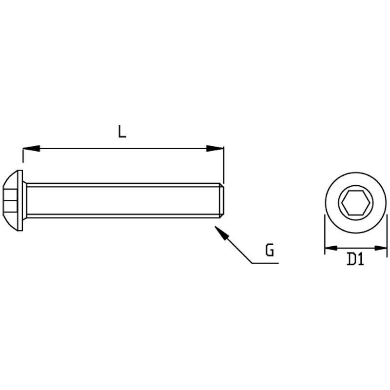 Photo of WDS Domehead Screw
