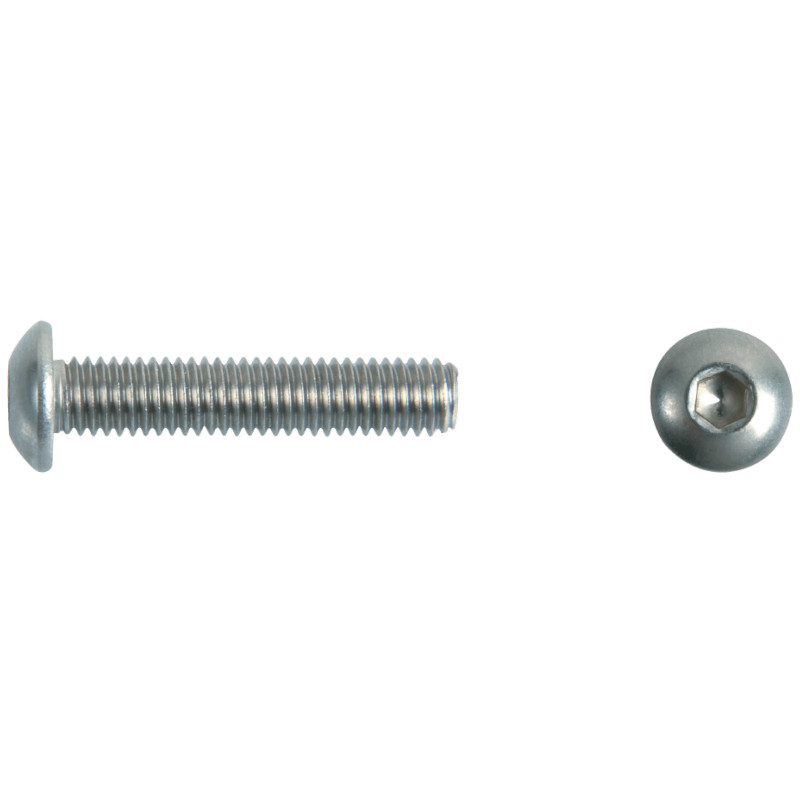 Photo of WDS Domehead Screw